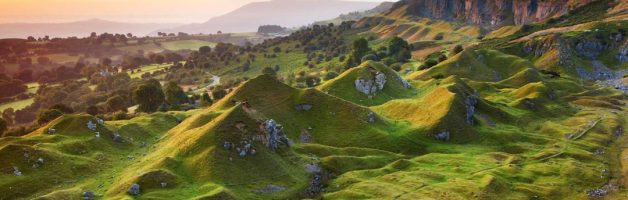Welsh Tints